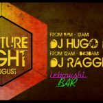 Menningarnótt / Culture Night Party